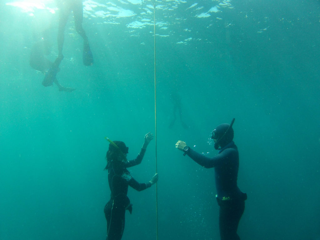 free diving Honduras