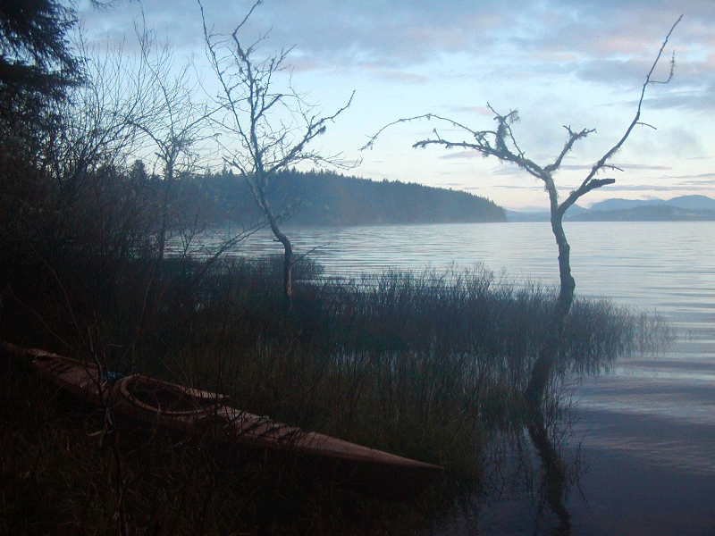 Lake Ozette morning