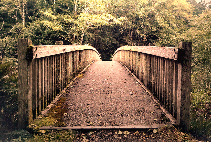 Trailhead Bridge Lake Ozette Vansage.com