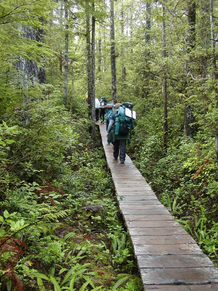 Hikers on Lake Crescent Boarwalk