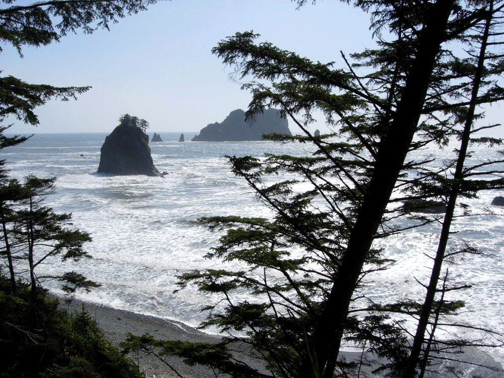 Olympic National Park High Tide