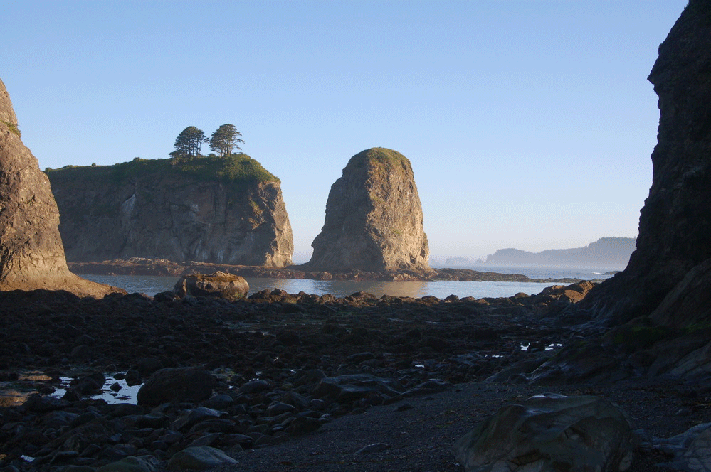 Sea Stacks Olympic National Park